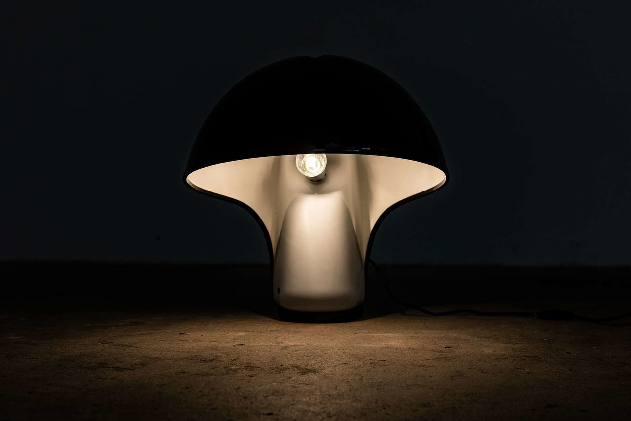 Albanella Table Lamp by Sergio Brazzoli and Ermanno Lampa for Guzzini