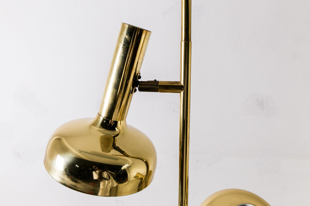 Brass Twin Floor Lamp