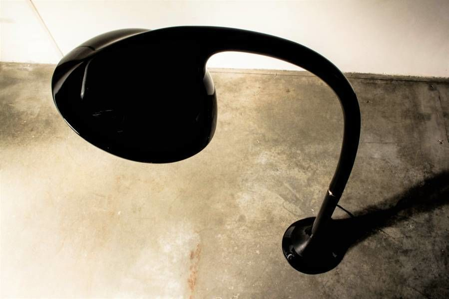 Lampione Floor Lamp by Fabio Lenci for Guzzini 1970s